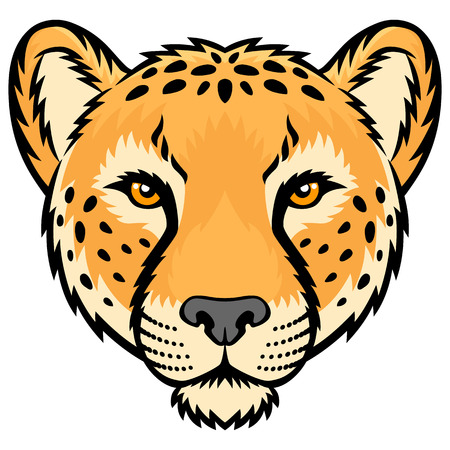 undomesticated cat: A Cheetah head logo. This is vector illustration ideal for a mascot and tattoo or T-shirt graphic. Illustration
