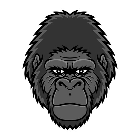 domination: A Gorilla head.  Illustration