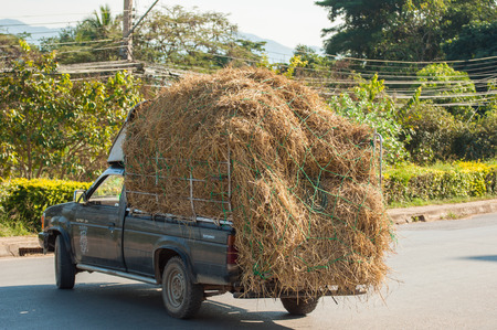 Straw in the truck, taken from the north of Thailand Reklamní fotografie