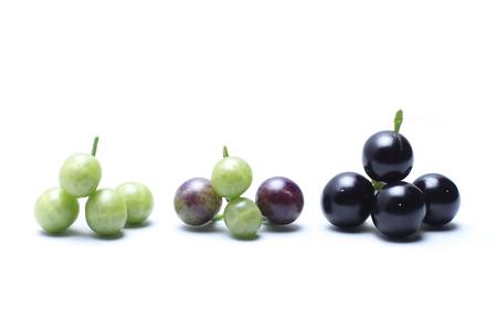 Dodelijke nachtschade, (aubergine) Een onkruid gevonden in de wildernis, Birdwing-vrucht De aard van de vrucht is bolvormig. Het is ongeveer 4-7 mm breed, gebruikt als een remedie voor borstkanker. Baarmoederhalskanker