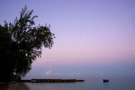 peer to peer: Un �rbol, peer y un barco durante un amanecer