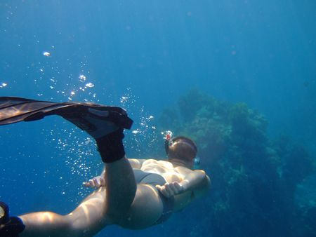 submerging: Free diver submerging to the bottom of the blue sea
