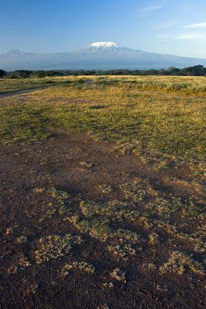 earth road: Molte tracce sulla strada sporca di terra e il monte Kilimangiaro in lontananza
