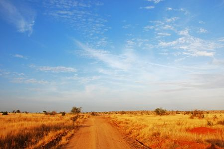 Dirt road going through golden savannah planes with blue sky above