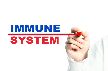 Hand draws a red line marker, emphasizes the important inscription medical IMMUNE SYSTEM Stock Photo