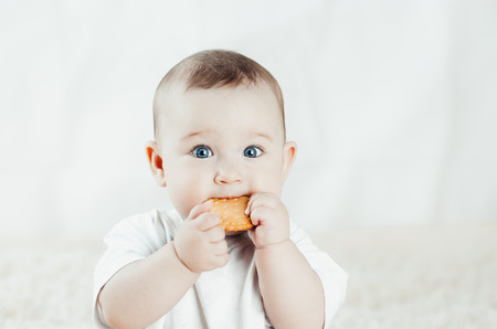 charming child sits and licks biscuits, scratching his teeth