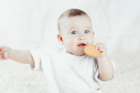 affascinante bambino si siede e lecca i biscotti, grattandosi i denti
