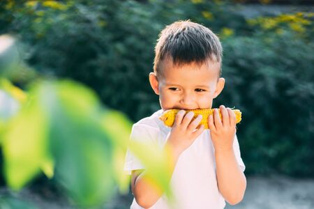 cute boy in the garden or outdoor Park eating boiled corn is very appetizing in summer Banco de Imagens