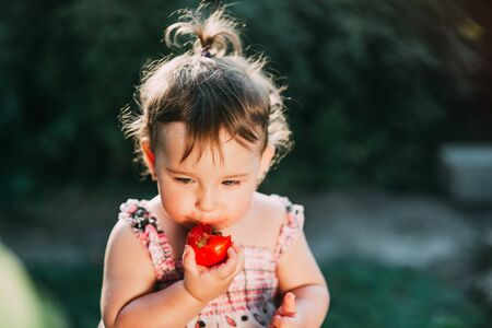 A little girl eating a tomato. Very cute backlight in the garden by yourself Banco de Imagens