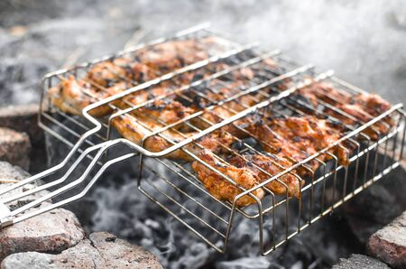 On the grid chicken meat on the coals in nature, in the woods Banco de Imagens