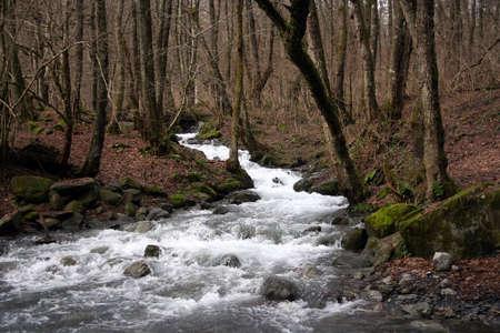 River Stock Photo - 6248576
