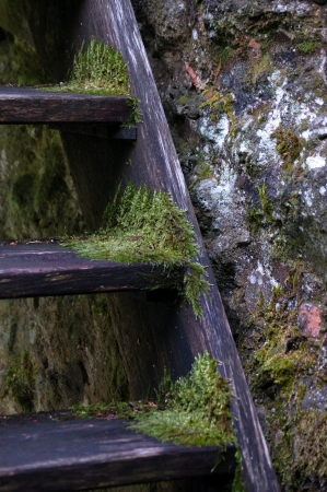 walling: rough walling with old mossy wooden stairs Stock Photo
