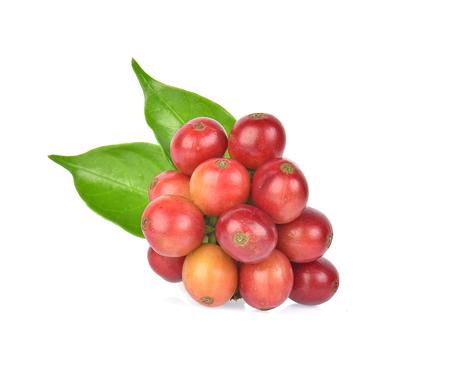 coffee beans on white background. 版權商用圖片