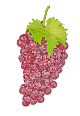 Set of cherry isolated on white background