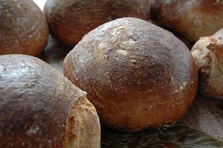 crusty: crusty loafs of bread