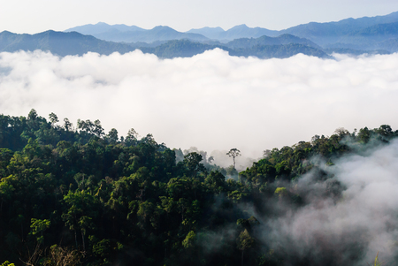 kaeng: View of morning mist at Khao Panoeng Thung on Kaeng Krachan National Park,Phetchaburi, Thailand
