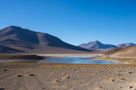 avaroa: Laguna Verde is a salt lake at the foot of the volcanos Licancabur and Juriques - Eduardo Avaroa Andean Fauna National Reserve, Bolivia