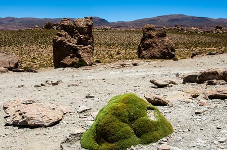 avaroa: Road near Laguna Colorada , Uyuni, Bolivia. Beautiful lanscape of Laguna Colorada Stock Photo