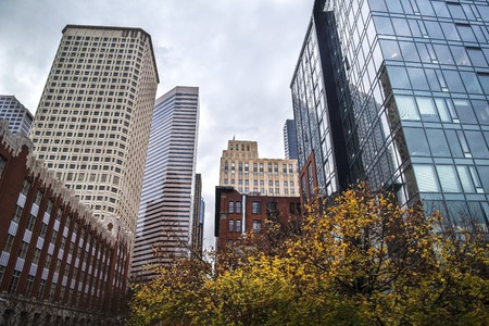 Architecture shot in Seattle at autumn time with orange trees 版權商用圖片