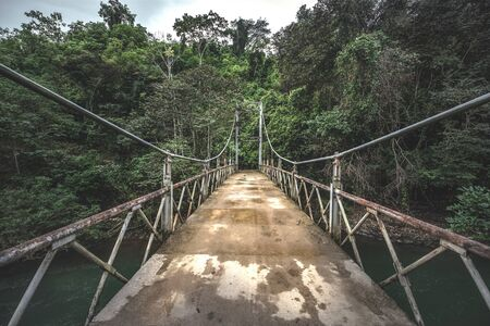 Suspension bridge in Costa Rica jungle gren forest