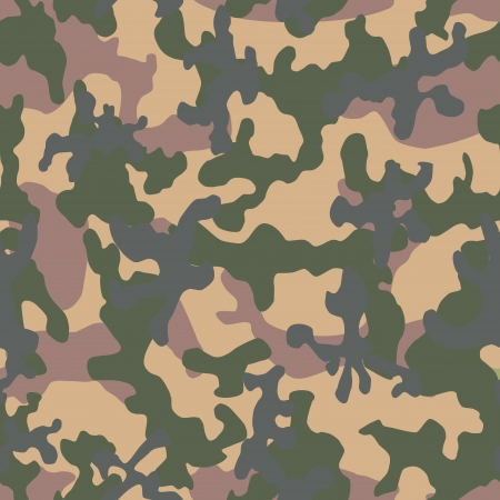 Vector image of the color camouflage  Vector