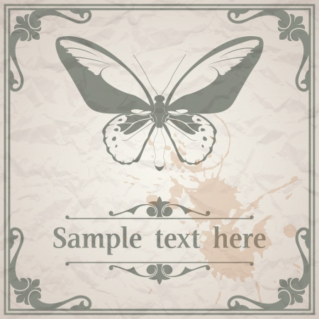 Vector image of color Butterfly on paper background vintage style Stock Vector - 16641346