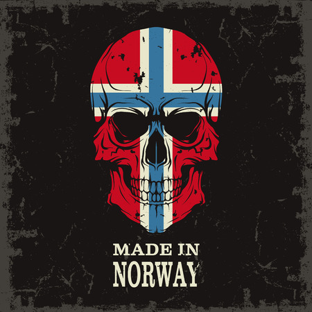 norway: The vector image Skull color of the flag Illustration