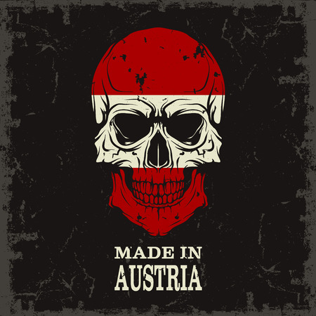 filthy: The vector image Skull color of the flag Illustration
