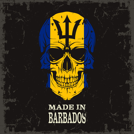 barbados: The vector image Skull color of the flag Illustration