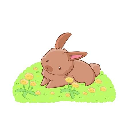Dandelion meadow and rabbit