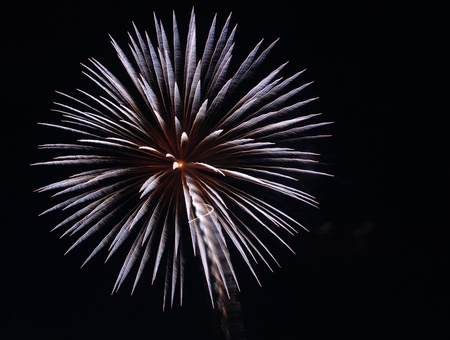 Bluish fireworks with copyspace in the dark sky Stock Photo - 10336483