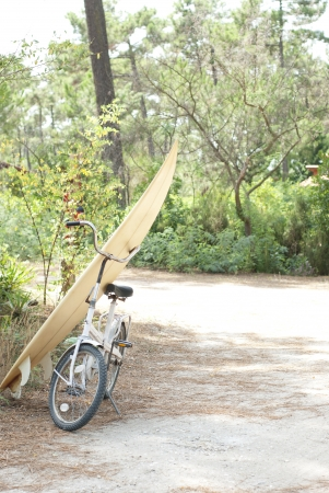 Bike and surfboard parked at side of road near beach photo