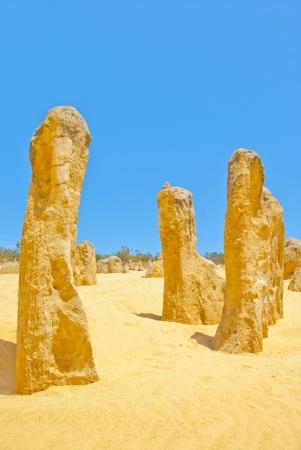 Pinnacles, Western Australia Stock Photo - 15374592