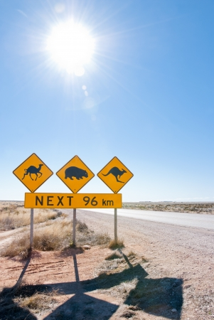 australia landscape: Typical Australian roadsign with Camel, Wombat and Kangaroo at Nullarbor Plain, Australia
