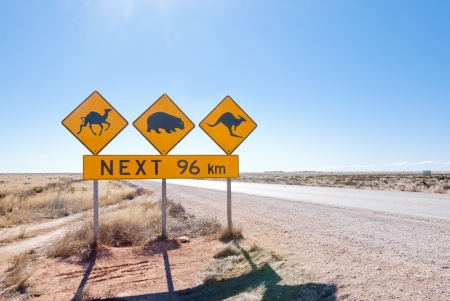 wombat: Roadsign típico australiano con Camel, Wombat y canguro en Nullarbor Plain, Australia