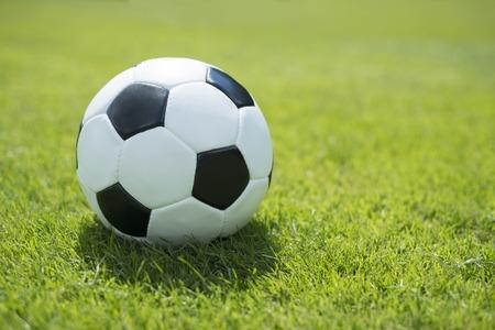 Classic soccer ball on fresh green lawn
