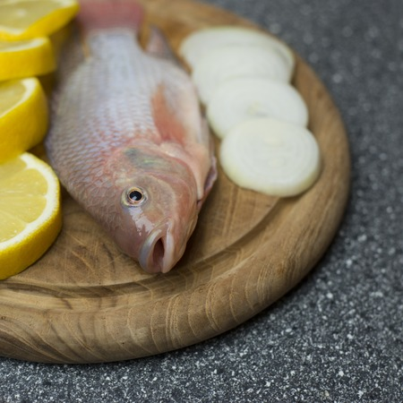 Fish at seafood restaurant tilapia a tasty freshwater species Imagens - 44498527