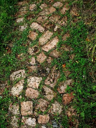 small road is put bricks and sprouts by grass photo