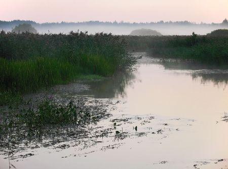 morning, river, rose sky, island in marsh photo