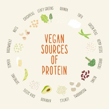 Vegan eiwitbronnen. Vector hand getrokken illustratie
