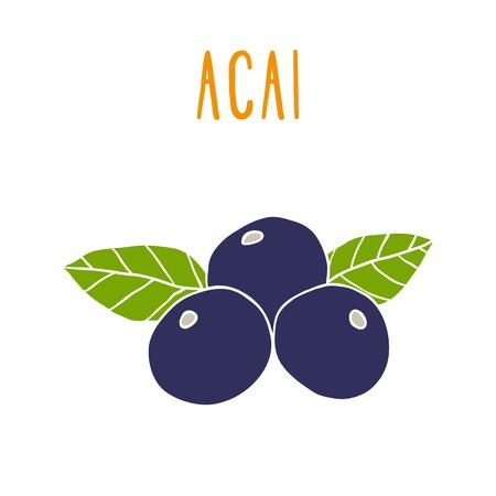 frutos rojos: Las bayas de Acai. Ilustraci�n de EPS vectoriales drwn 10 mano
