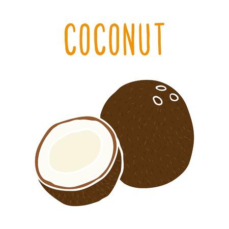 coconut drink: Coconut. Vector hand drawn illustration. Illustration