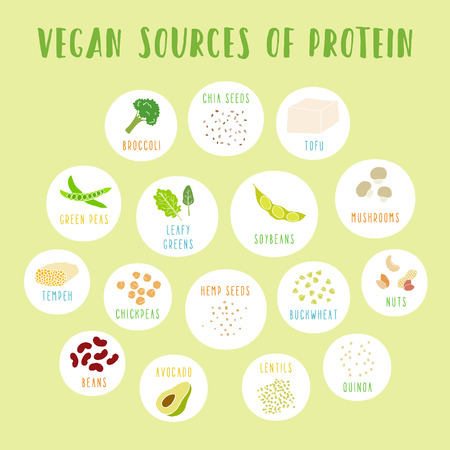 soy free: Vegan sources of protein. Vector info poster.