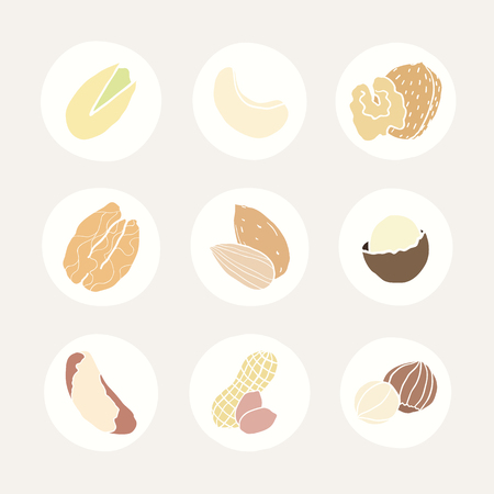 Set of different nuts icons. Vector hand drawn illustrations