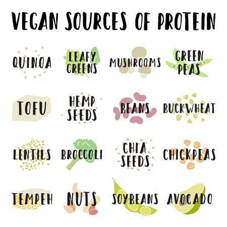 Fonti di proteine ??vegane. Illustrazione d'illustrazione vettoriale disegnata a mano