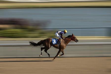 cavallo in corsa: Fantino su un cavallo da corsa su pista Archivio Fotografico