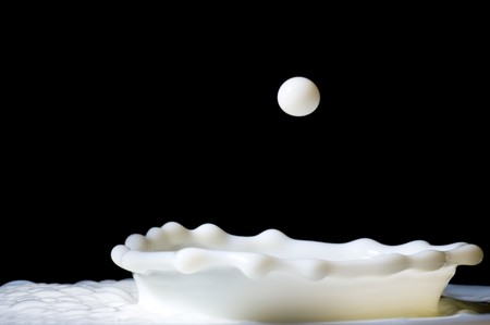 milk fresh: Close up of milk splash with drop Stock Photo