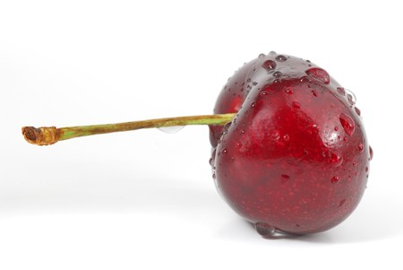 Fresh cherry on white background with some dew Stock Photo - 4473221