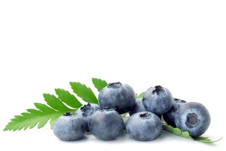 Extreme close-up of blueberries studio isolated on white background