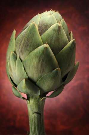 Abstract image of an artichoke with abstract background photo